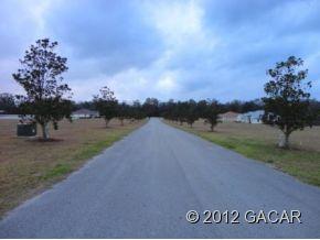 High Springs Fl 32643 Real Estate. Nick Reed