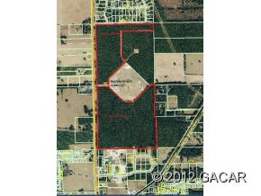 Vacant Land listings in Newberry real estate
